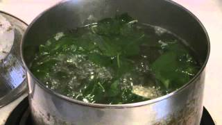 Traditional Chinese Soup  (Goji Greens Soup)