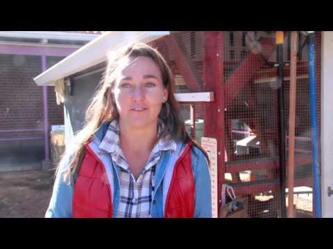 Manzo Elementary Ecology Program