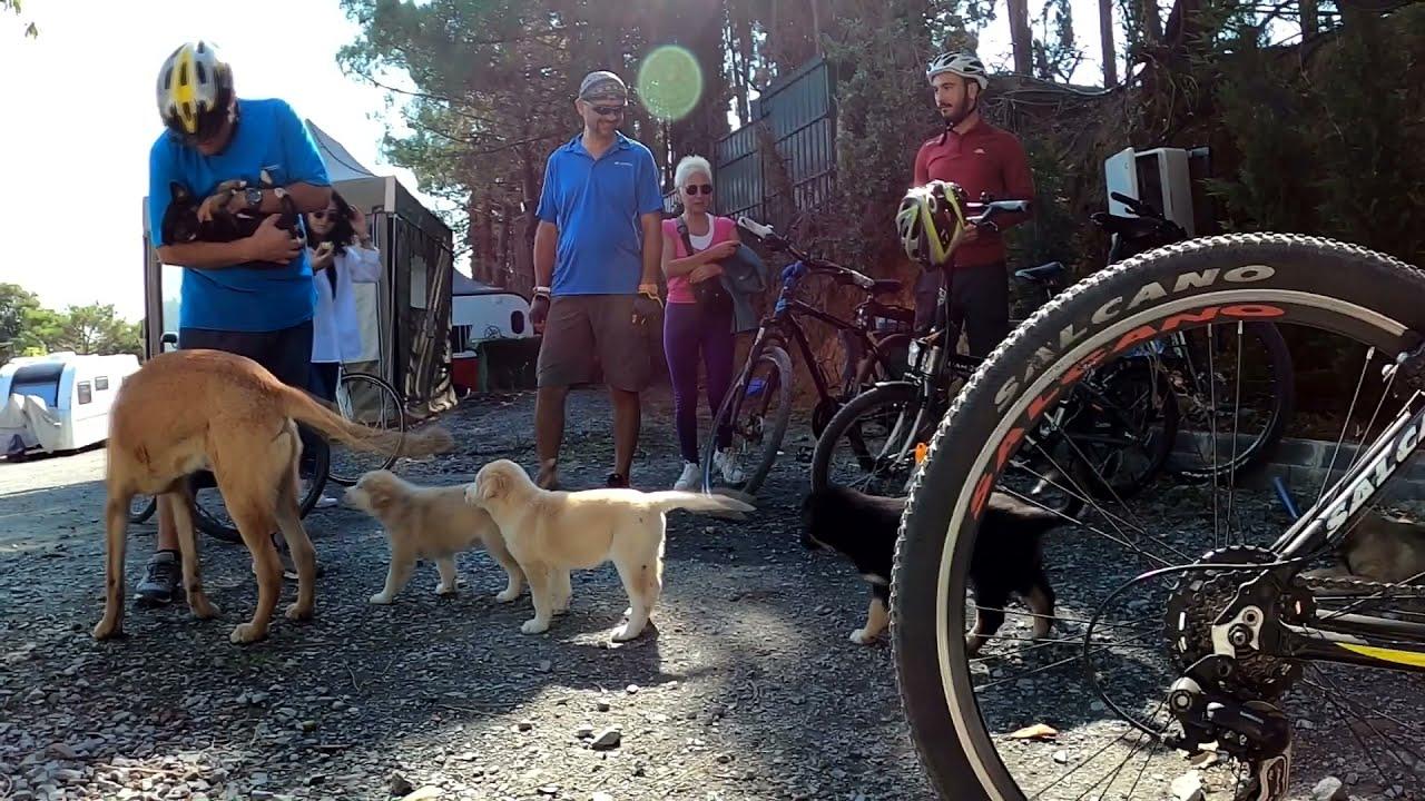 Karavan Kamp Bisiklet Turları