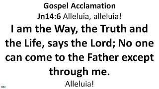 17 October 2021 Catнolic Mass Daily Bible Reading