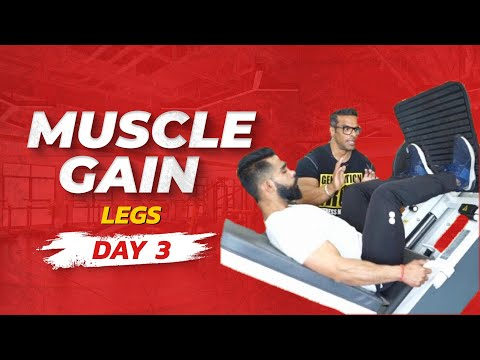 Muscle gain workout