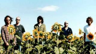 Super furry animals: Dx Heaven