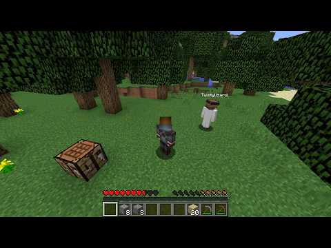 Survival Series Episode 1: Meet the Chickens! Henry, Benedict, And Isabella!