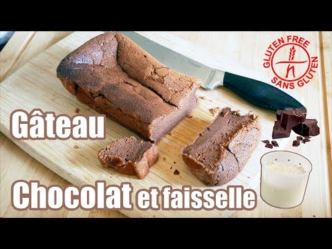 gâteau-au-chocolat-facile-sans-gluten-🍫