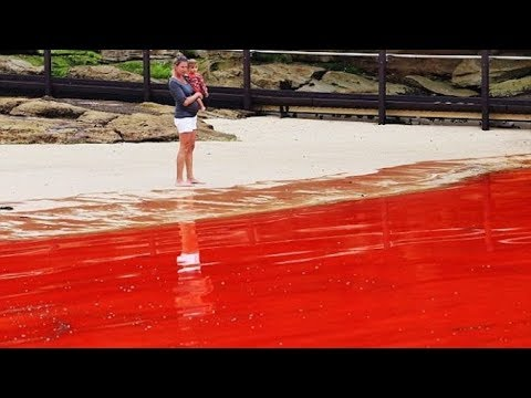 Rivers Turning Red All Over The World As Biblical End Times Prophecy Fulfilled