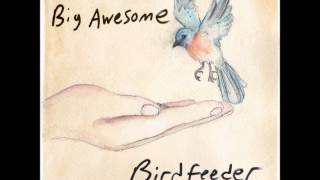 'birdfeeder'- Big Awesome