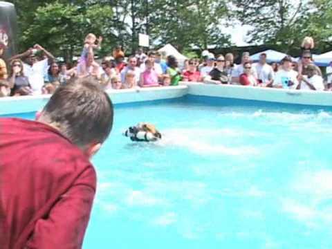 2009 Dominion Riverrock Ultimate Air Dogs