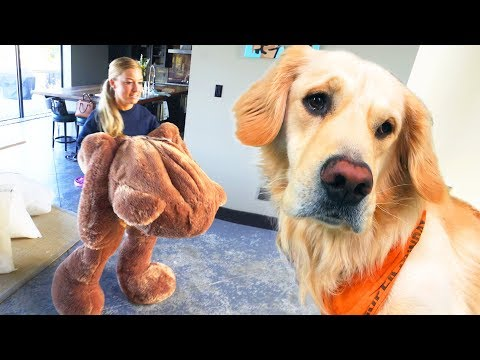 DOG TOY COMES TO LIFE! (Giant 6ft Teddy Bear)