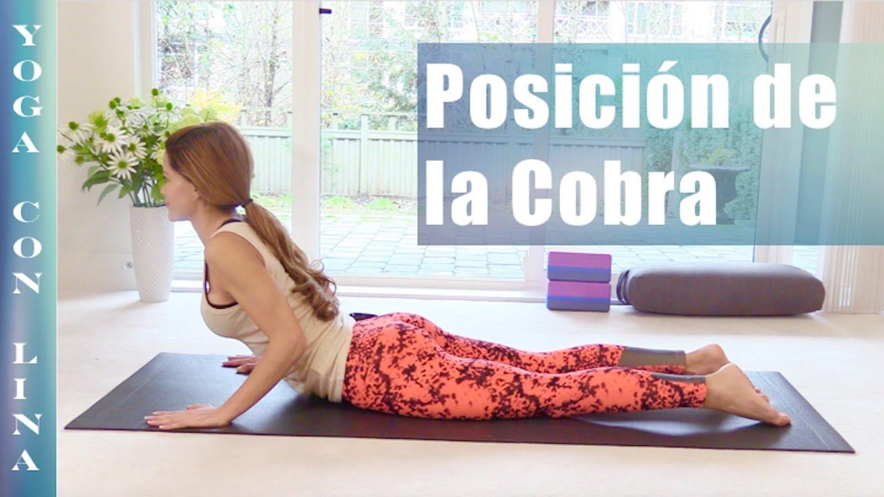 BASES PARA EL YOGA. POSICIÓN DE LA COBRA - YouTube 41c4350abeac