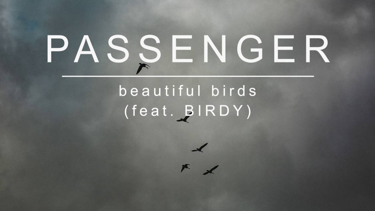 Passenger | Beautiful Birds (feat. Birdy) (Official Album Audio)