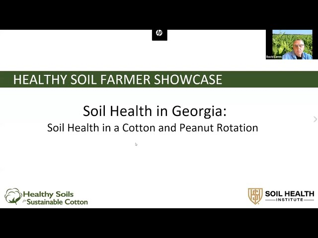Soil Health in Georgia: Soil Health in a Cotton and Peanut Rotation