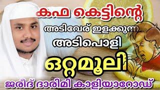Powerful home remedi to cure cough and cold in malayalam/കഫകെട്ടിന്റെ അടിവേര് ഇളക്കുന്ന മരുന്ന്