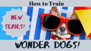 How to Train Wonder Dogs: Series Trailer