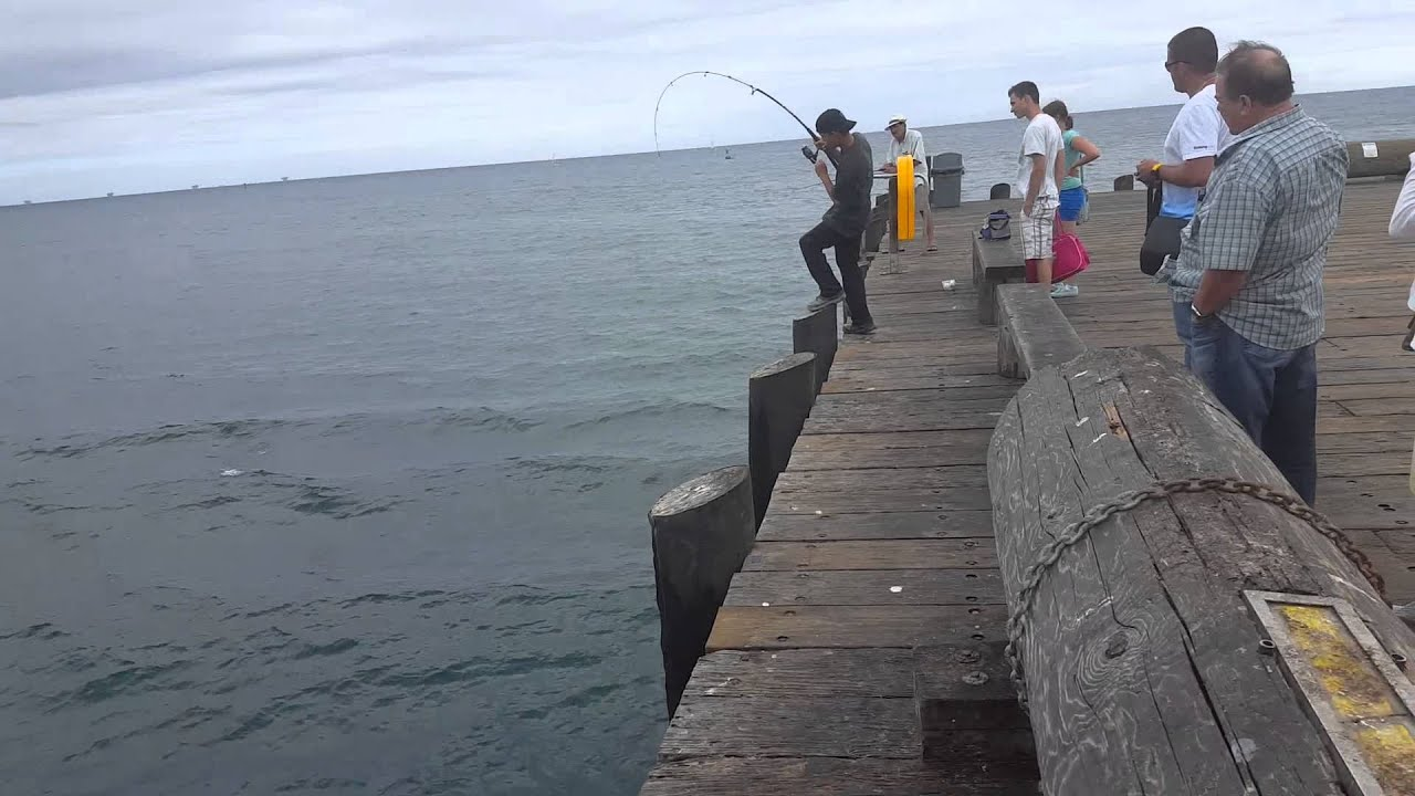 fishing in santa barbara youtube