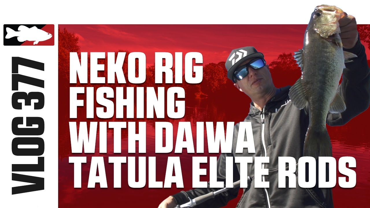 Brent ehrler neko rig fishing with daiwa tatula elite for Neko rig fishing