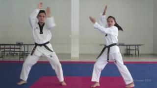 TAEKWONDO DANCE PERFORMANCE