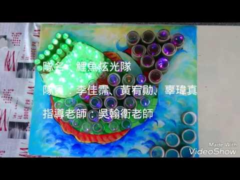第五屆作品:鯉魚炫光