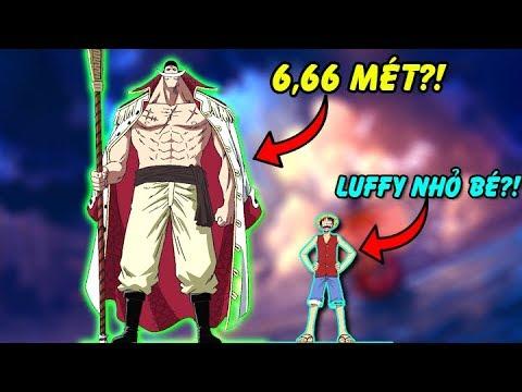Top 10 Nhân Vật Siêu To Khổng Lồ Nhất Trong One Piece Khiến Bạn Bất Ngờ