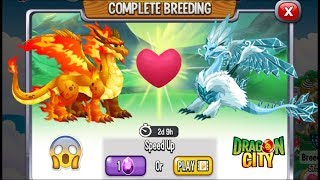 Dragon City: Double Flame Dragon & Ice Dragon | Exclusive Breeding ...