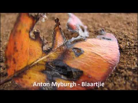 Anton Myburgh - Blaartjie