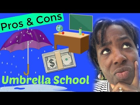 Pros and Cons of an Umbrella School