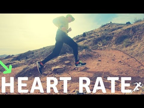 Heart Rate Training for Runners, no Experience & Your Thoughts?