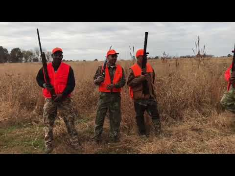 "The Mississippi Boys | ""Show Me Birds"" 