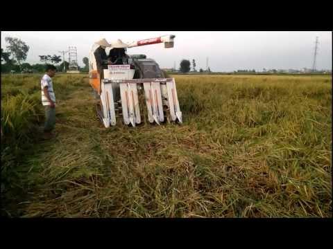 Máy gặt đập liên hợp ISEKI Japan 6 cắt lúa đổ - haisonco.vn