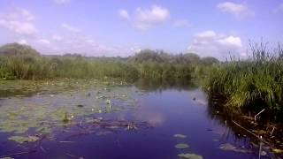 Скоростной проход реки Mercury M15 лодка Nissan 380