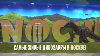Dino Play - игровая площадка в ЦДМ на Лубянке