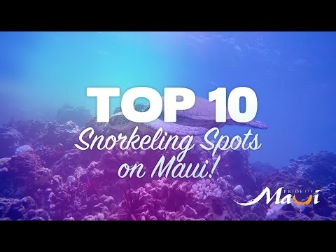 TOP 10 Snorkeling Spots on Maui - Pride of Maui