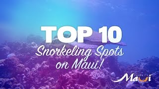 TOP 10 Snorkeling Spots on Maui - Pride of Maui