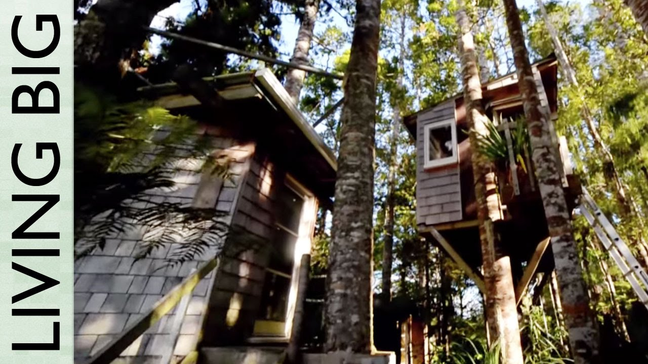 Easy diy tree houses