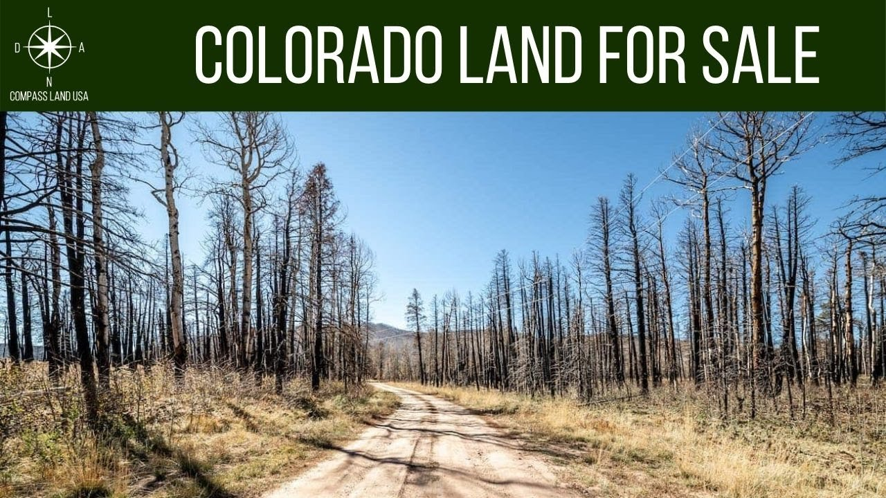 SOLD By Compass Land USA - 1.73 Acres Land for Sale in Forbes Park Costilla County Colorado
