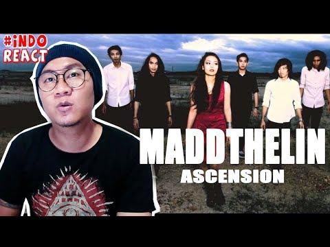 Free Download Maddthelin - Ascension #indoreact Mp3 dan Mp4