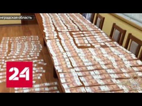 Калининградского чиновника поймали на крупной взятке - Россия 24