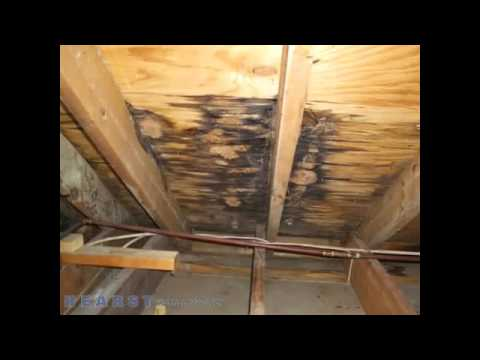 Wood Roofing - Storm Damage - Coleman TX 76834