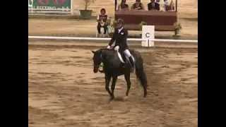 MOV01B Pedja Marjanovic Dressage Individual Final Southeast Asian Games 2013 Naypyitaw