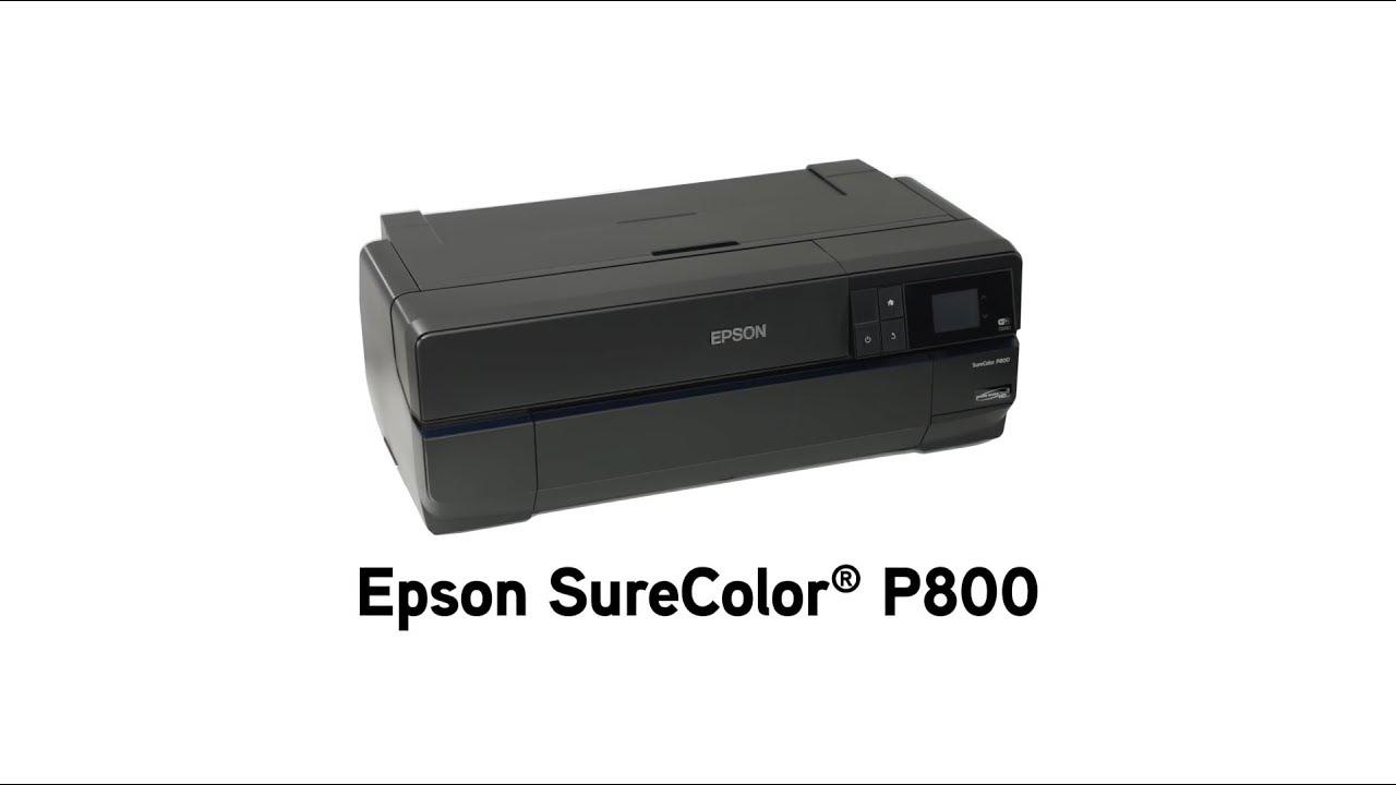 EPSON SureColor P800 Designer Edition Printer