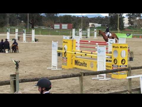 Amaroo Vee Bee Mini Prix Border Districts Show Jump Champs Aug 2016