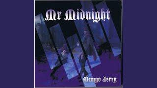 Mr Midnight (Dance DJ Mix)