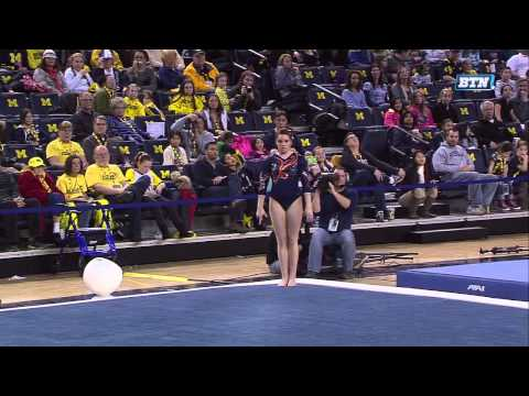 2013.01.19.Michigan.vs.Illinois.720p.x264.NastiaFan101