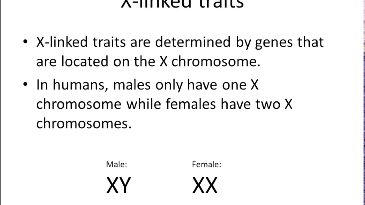 What is sex linked traits foto 915