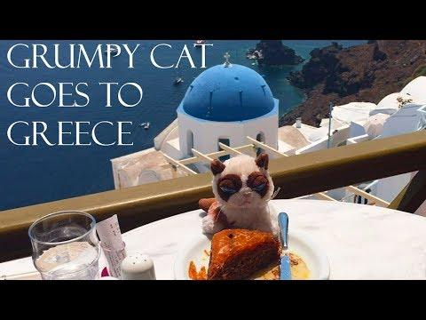 Grumpy Cat Goes To Greece - Travel to Greece and Santorini, Mykonos, Athens, Rhodes, Crete