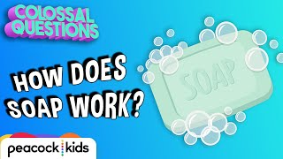 How Does Soap Work? | COLOSSAL QUESTIONS