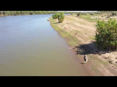 Lower Ord River wildlife, scenery & crocodiles in 4K