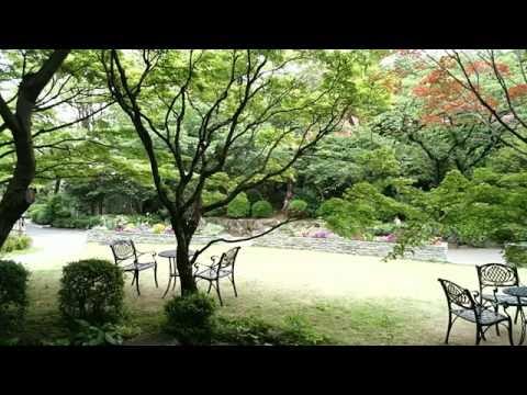 【気軽にクラシック11】 <安らぎ> ベートーヴェン: 田園・第2楽章 (NHK響)