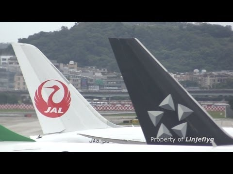 JAPAN AIRLINES BOEING 787-8 JA829J@TSA