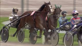 Vidéo de la course PMU PRIX FACE TIME BOURBON