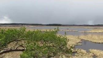 Patalahti bird lake, Maaninka